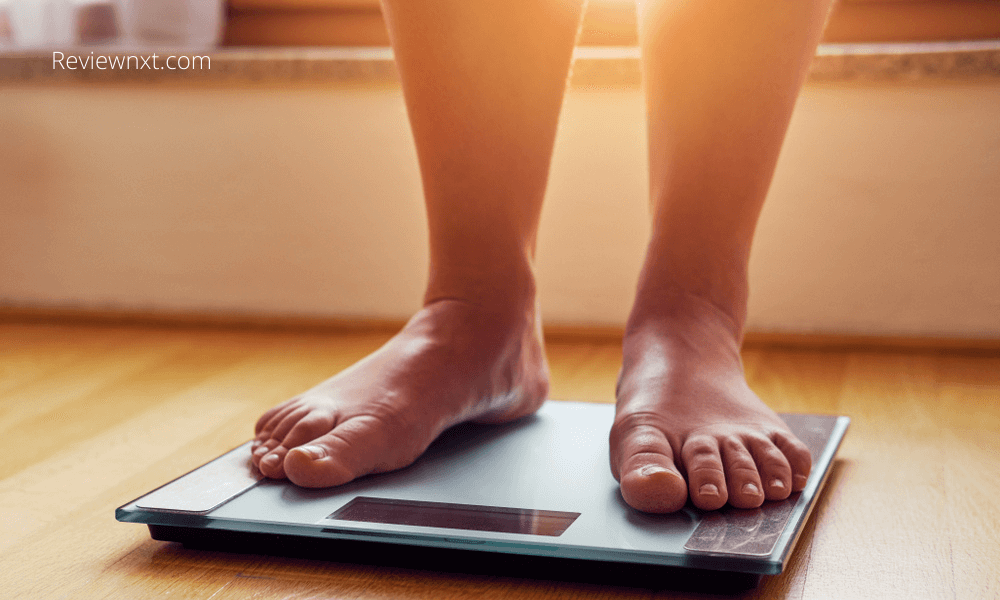 Best Digital Scale for Weight in India